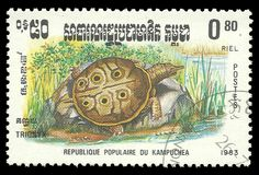 Reptiles, Softshell Turtle. Cambodia - stamp printed 1983, Memorable issue of offset printing, Topic Wildlife Fauna, Series Reptiles, Softshell Turtle, Trionyx Stock Images