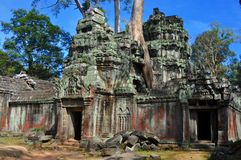 Cambodia - Ta Prohm temple. Angkor Wat, Siem Reap area (Cambodia) - Ta Prohm temple, also called Tomb Raider temple, where silk-cotton trees are consuming the Stock Photo