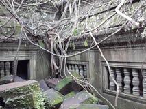 cambodia Tempio di Beng Mealea Provincia di Siem Reap Città di Siem Reap Fotografia Stock