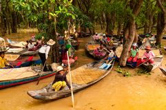 Cambodian Boat People in the lagoon forests near Tonle Sap Lake stock photography