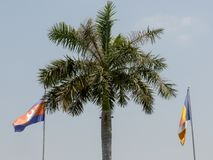 Cambodian and Buddhist flags. On the pols in Phnom Penh stock image