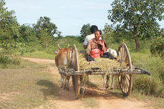 Cambodian Cart Royalty Free Stock Photo