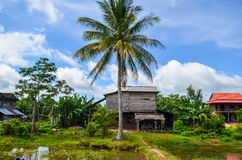 Cambodian countryside, Siem Reap, Cambodia Royalty Free Stock Photo