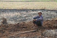 Cambodian Farmer Stock Photos