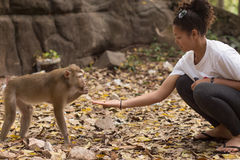 Asian Girl Feeding a Monkey Peanuts Royalty Free Stock Image