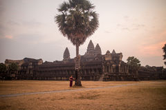 Cambodian Asian Girl in Traditional Dress by a Palm Tree at Angkor Wat Temple Royalty Free Stock Photo