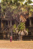 Cambodian Asian Girl in Traditional Dress by a Palm Tree at Angkor Wat Temple Stock Images