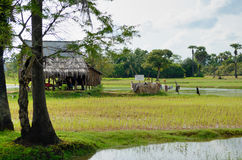 Cambodian peasant house Stock Photography
