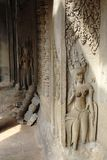 Cambodian stone carvings. Apsara dancers carved into the stone in the ruins of Angkor Wat, Cambodia Royalty Free Stock Photography
