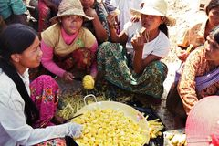 Cambodian women preparing for lunch. It was shoot in a small cambodian village near by siam reap. These women were preparing for lunch for school children Stock Photo