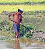 Cambodjaanse Arbeider Royalty-vrije Stock Afbeeldingen