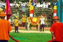 Camboja o presh Ploughing real do bayon do angkor de Siem Reap da cerimônia vihear Foto de Stock