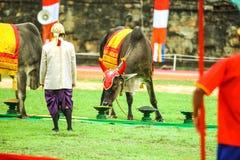 Camboja o presh Ploughing real do bayon do angkor de Siem Reap da cerimônia vihear Foto de Stock Royalty Free