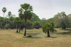 Camboya Angkor Wat. Fotos de archivo