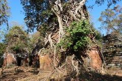 camboya Ciudad de Koh Ker Cochecito de niño de Prasat Provincia de Preah Vihear Ciudad de Siem Reap Foto de archivo