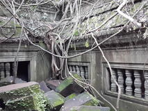 camboya Templo de Beng Mealea Provincia de Siem Reap Ciudad de Siem Reap Foto de archivo