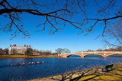 Cambridge. View of the Charles River with the Weeks Memorial Footbridge and a Harvard's Crimson Lightweight crew rowing its boat on a sunny spring day Royalty Free Stock Photography
