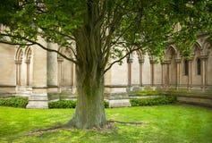 Cambridge Stock Photography
