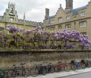 Cambridge bicycles stock photography