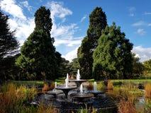 Cambridge botanisk trädgård Royaltyfria Foton