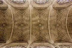 Cambridge Cathedral Ceiling Stock Photography