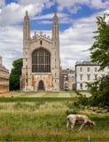 Cambridge för konunghögskolakapell universitet England arkivfoton