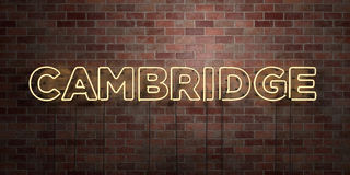 CAMBRIDGE - fluorescent Neon tube Sign on brickwork - Front view - 3D rendered royalty free stock picture Stock Photography