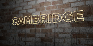 CAMBRIDGE - Glowing Neon Sign on stonework wall - 3D rendered royalty free stock illustration Royalty Free Stock Images