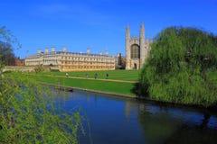 Cambridge kampus Obraz Stock