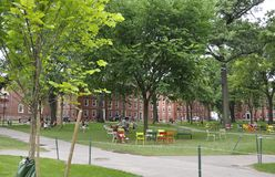 Cambridge mA, il 30 giugno: Iarda della città universitaria di Harvard nello stato di Cambridge Massachusettes di U.S.A. Fotografia Stock Libera da Diritti