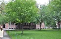 Cambridge mA, il 30 giugno: Iarda della città universitaria di Harvard nello stato di Cambridge Massachusettes di U.S.A. Immagine Stock