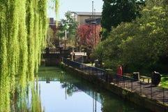 Cambridge, park, krzywka rzeka obrazy royalty free