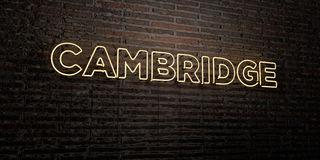 CAMBRIDGE -Realistic Neon Sign on Brick Wall background - 3D rendered royalty free stock image Royalty Free Stock Images