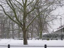 Cambridge sous la neige Photographie stock