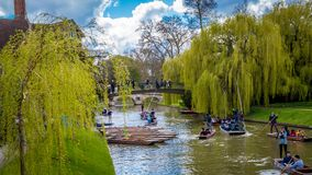 People punting on river Cam royalty free stock photography