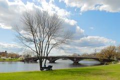 cambridge wczesna wiosna Zdjęcia Royalty Free