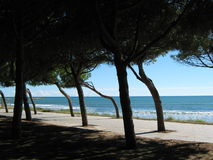 Cambrils Promenade Royalty Free Stock Photos