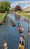 Came Cambridge Angleterre de rivière Image stock