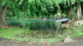 Camecuaro湖 免版税图库摄影