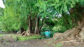 Camecuaro湖 库存图片