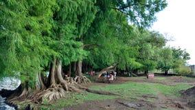 Camecuaro lake Royalty Free Stock Images