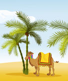 Camel. Image of a camel in the background of tropical palm trees Royalty Free Stock Photos