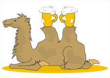 Camel. Bactrian camel carries two glasses of beer Stock Images