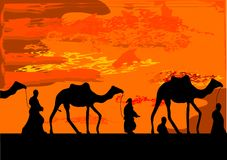 Camel. Caravan and orange sky Stock Photography