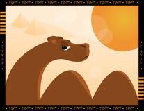 Camel And Desert Stock Image