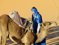 Camel and arab camel driver ready to ride in desert Royalty Free Stock Images