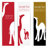 Camel banners Stock Photography