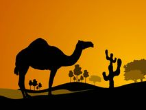 Camel and cactus. Near trees Royalty Free Stock Images