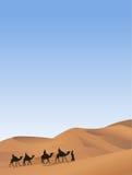Camel Caravan Stock Photos