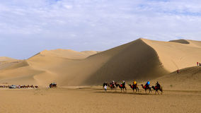 Camel caravan in the desert Royalty Free Stock Photography